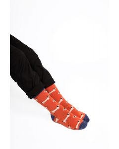 Sausage Dogs Socks Orange