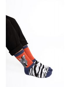 Wild Zebra Socks Orange