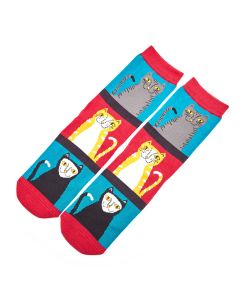 Cats & Stripes Socks Teal