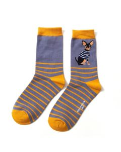 Chihuahua Stripes Socks Blue